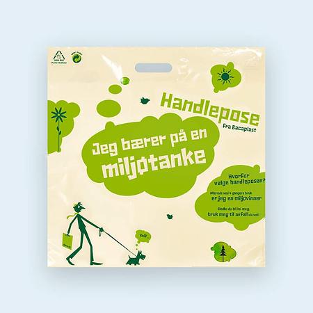 Alternativ til papirposer, handlenett og engangsposer.